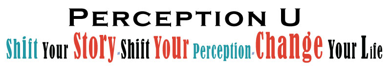 PERCEPTION U header image
